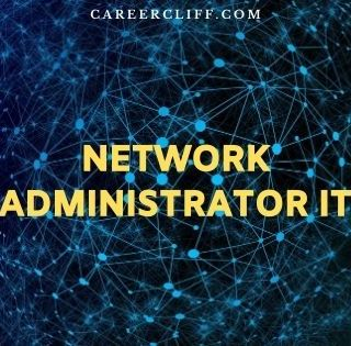 network administrator it
