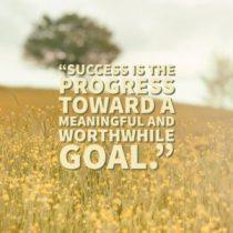 Success is the progress