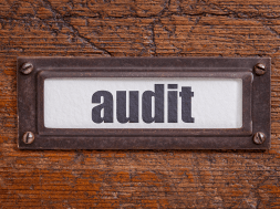 audit-guide