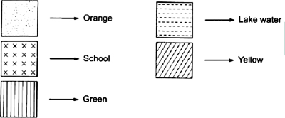 CBSE 8, Math, CBSE- Visualizing Solid Shapes, NCERT Solutions