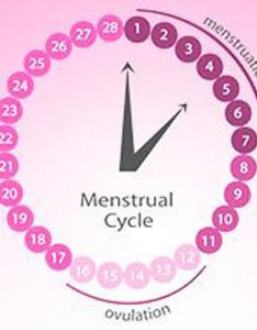 Ovulation calculator know whats an orfertility cycle also understand what is  fertility rh carefreearabia