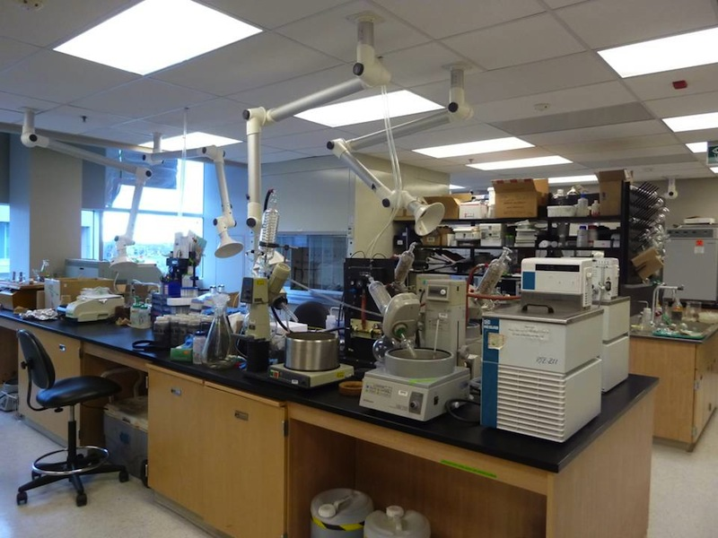 Laboratory for the Analysis of Natural and Synthetic