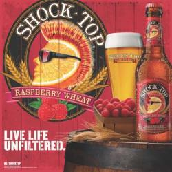 Shock-Top-Raspberry-Wheat1-490×490