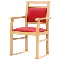 Verona Side Chair With Arms And Skis
