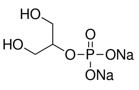 glycerophosphate