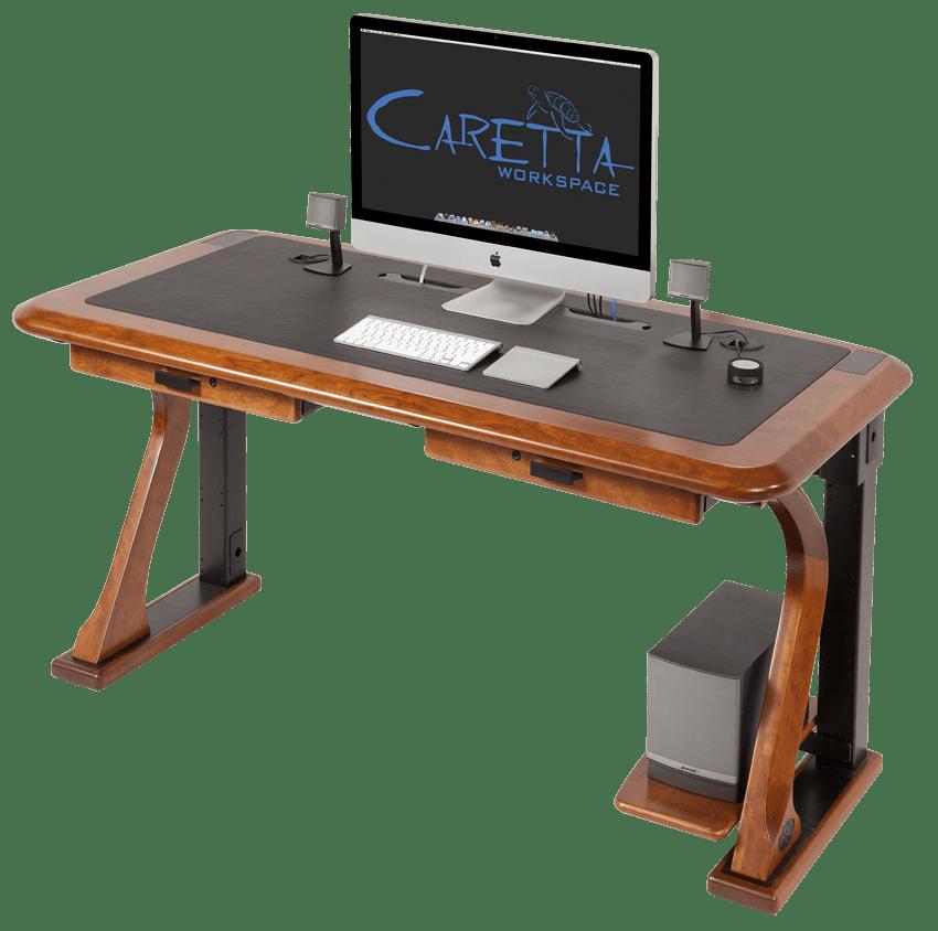 Artistic Computer Shelf
