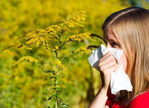Tips for handling spring allergies
