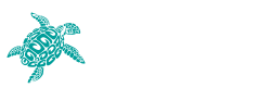 Carey trips luxury yacht