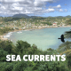 Sea Currents - Caribbean-SEA Fall 2018 Newsletter