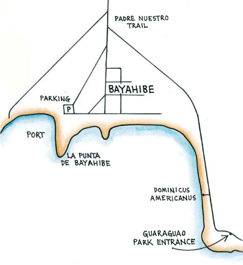 Bayahibe (Map by Dana Gardner)