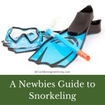 A Newbies Guide to Snorkeling for vacationing in the Caribbean