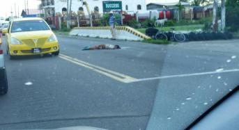 73 year old cattle farmer struck down by motor lorry