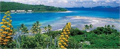 Brandywine Bay. Photo courtesy www.ultimatebvi.com