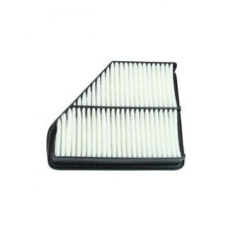 2011 Hyundai Genesis Coupe Replacement Air Filters at