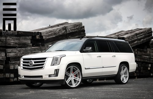 small resolution of top white escalade photo by exclusive motoring
