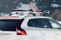 Roof Ski & Snowboard Racks at CARiD.com
