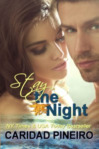 Stay the Night Erotic Military Romance