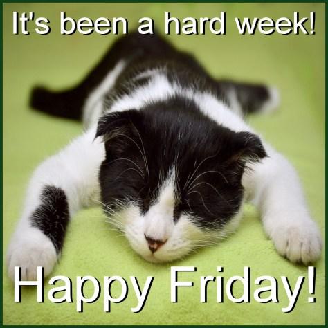 #FridayFun Happy Friday!   Caridad Pineiro®