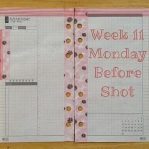 Week 11 Monday Before Shot