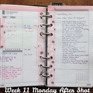 Week 11 Monday After Shot -- Filofax Personal Malden with DIYFish Lifemapping Inserts