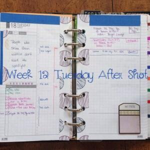 Week 12 Tuesday After Shot