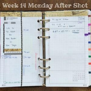 Week 14 Monday After Shot