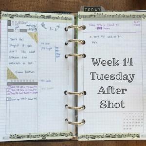 Week 14 Tuesday After Shot