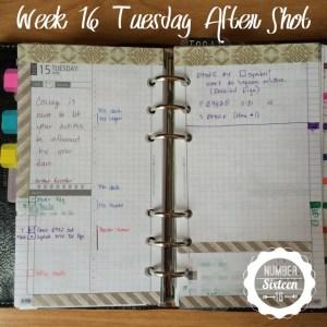 Week 16 Tuesday After Shot