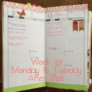Week 33 Monday & Tuesday After Shot