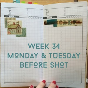 Week 34 Monday & Tuesday Before Shot