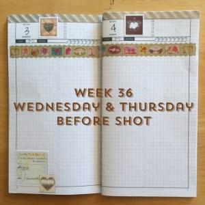 Week 36 Wednesday & Thursday Before Shot