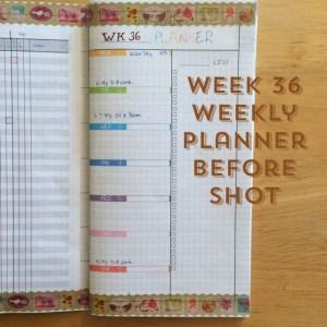 Week 36 Weekly Planner Before Shot