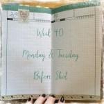 Week 40 Monday & Tuesday Before Shot