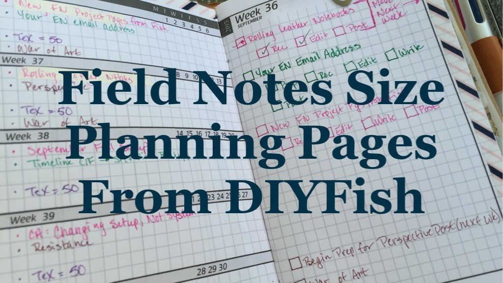 DIYFish FN Planning Pages (vCarie)