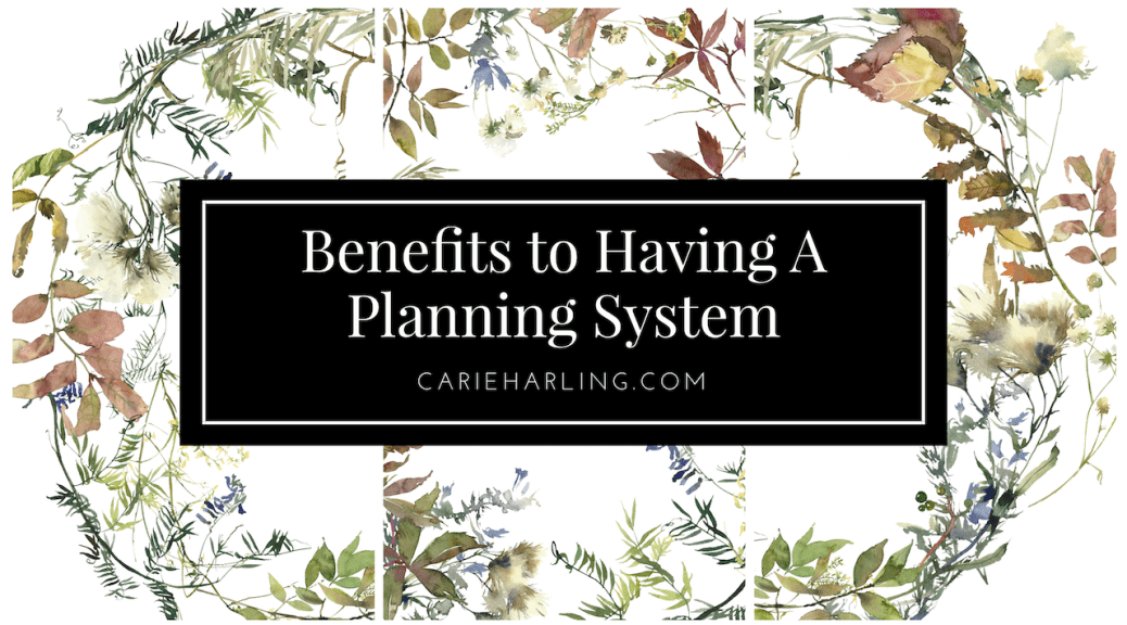 Benefits to Having a Planning System FI