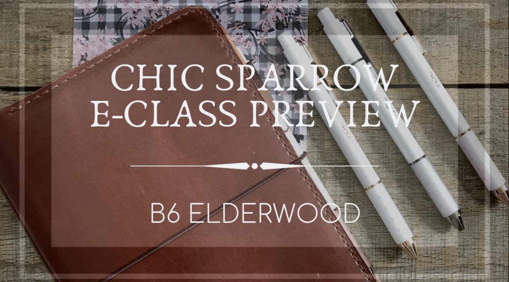 CS E-Class Preview FI