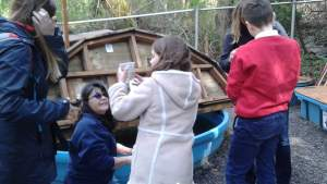 St. Benedict students delivery their salmon fry to the Salmon Imprint Pond at Carkeek Park