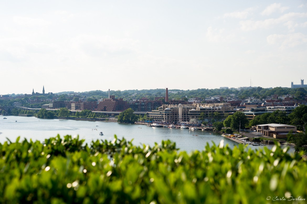 Views from the Kennedy Center roof top terrace - Photographer Carla Durham - Carla in the City