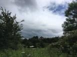 170618 Loch Lomond 3
