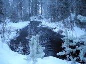 20151223 LAPLAND Trekking2_12