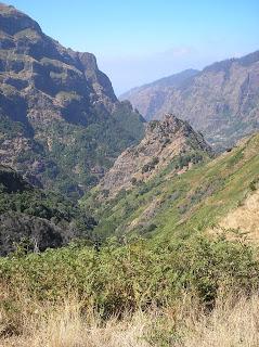 200507_Madeira 0805_2