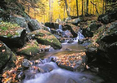 Fall Calendar Desktop Wallpaper Fall Photography Workshop Adirondack Nature Photography