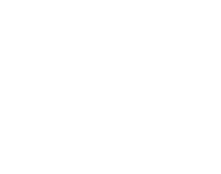 logo carlin cannes