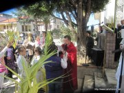2012_04_01-CapOrlando-S_Antonio-Domemnica_PALME-06