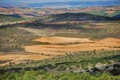 Campos y tierras altas