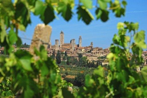 San Gimignano desde sus viñedos