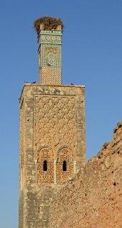 Necrópolis de Chellah. Muro y Minarete