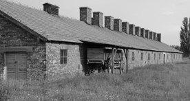Auschwitz II-Birkenau. Barracón y Carro