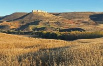 Castillo de Jadraque desde la campiña