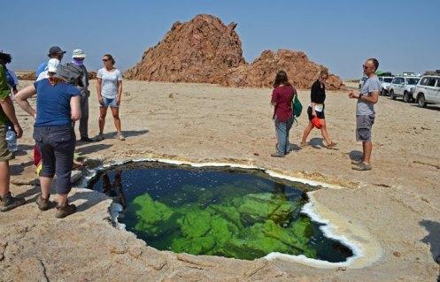 Pozos de agua hipersalina que se abren bajo la corteza de sal pétrea